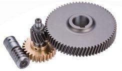 Worm gear and spur gear mechanism